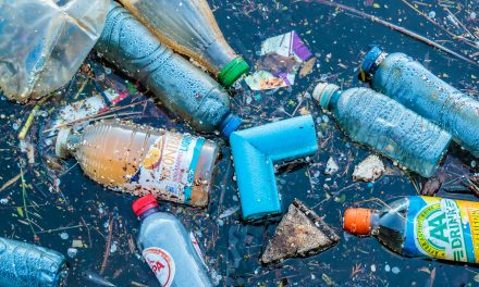 How Much Do You Really Know About Plastic Pollution?