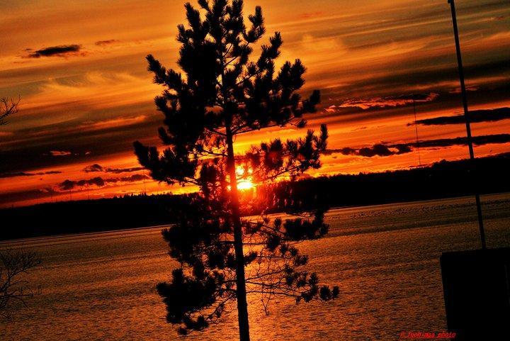 PT Sunset