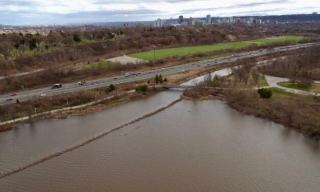 City facing provincial charges over Chedoke Creek sewage and stormwater leak