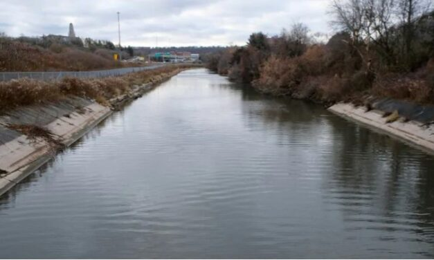 Hamilton City says it will dredge Chedoke Creek following ministry order